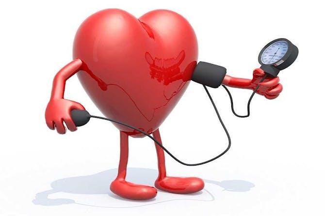 ما هي العلاقة بين ضغط الدم وضربات القلب